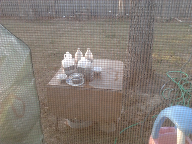 Winter Sowing and a Keyhole Garden