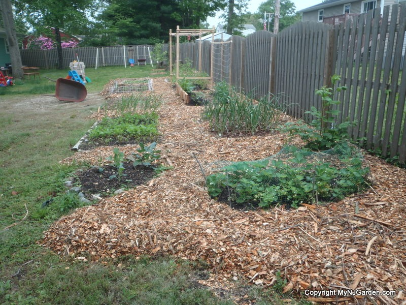 I can move mulch mountains!