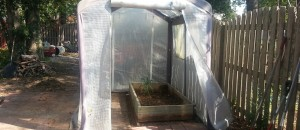 Garden Layout Changes and Setting up the Greenhouse for Cool Weather
